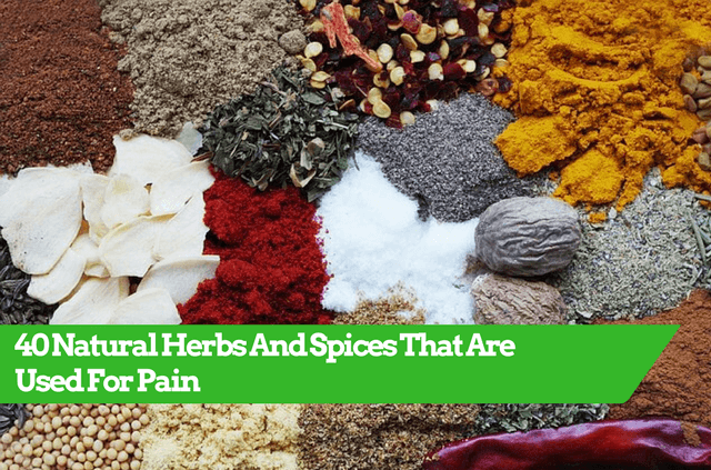 Herbs For Pain, List Of Herbs And Spices